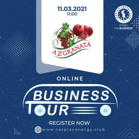 Online Business Tour - 11.03.2021