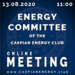 ENERGY COMMITTEE'S ONLINE MEETING - 13.08.2020